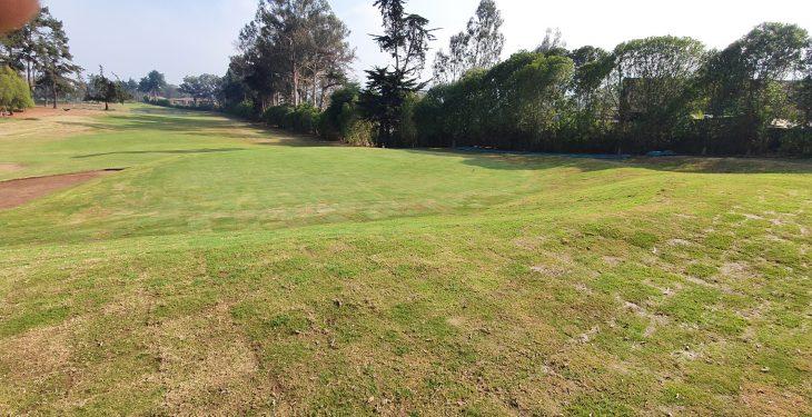 Galería de imágenes - Avance de los trabajos en la cancha de golf (agosto)